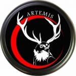 Artemis is the Greek goddess of the hunt