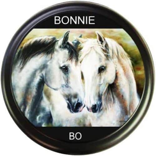 Bonnie Bo wheel cover