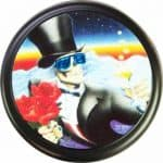 Skelton with roses tire cover